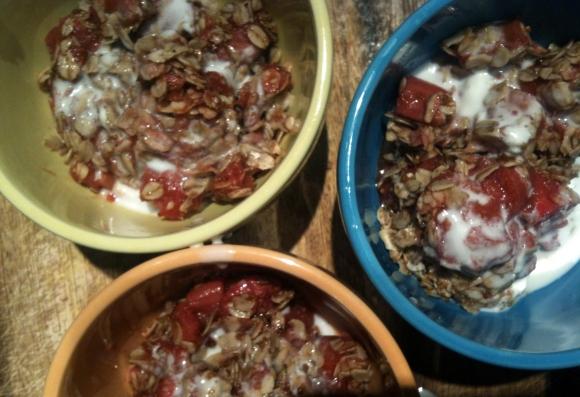 Rhubarb Crisp 3